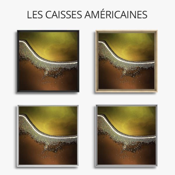 chesnel-paysage-cellulaire
