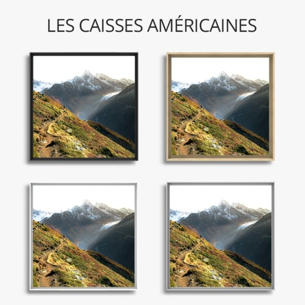 Face-aux-elements_grandcolas
