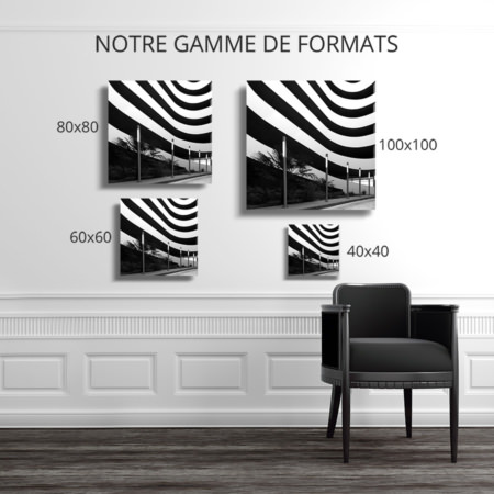 Photo-alternance-monochrome-format-deco