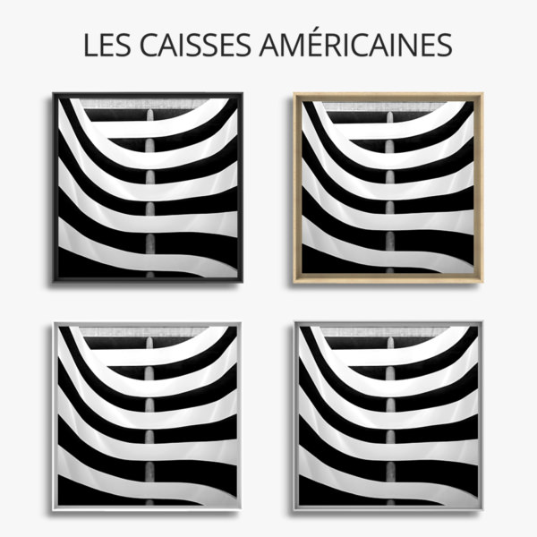 Photo-zebrures-caisse-americaine