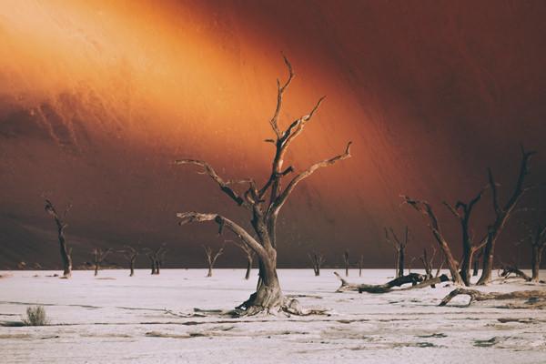 metayer-coucher-de-soleil-sur-deadvlei