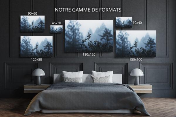 Photo-plantes-formats-deco