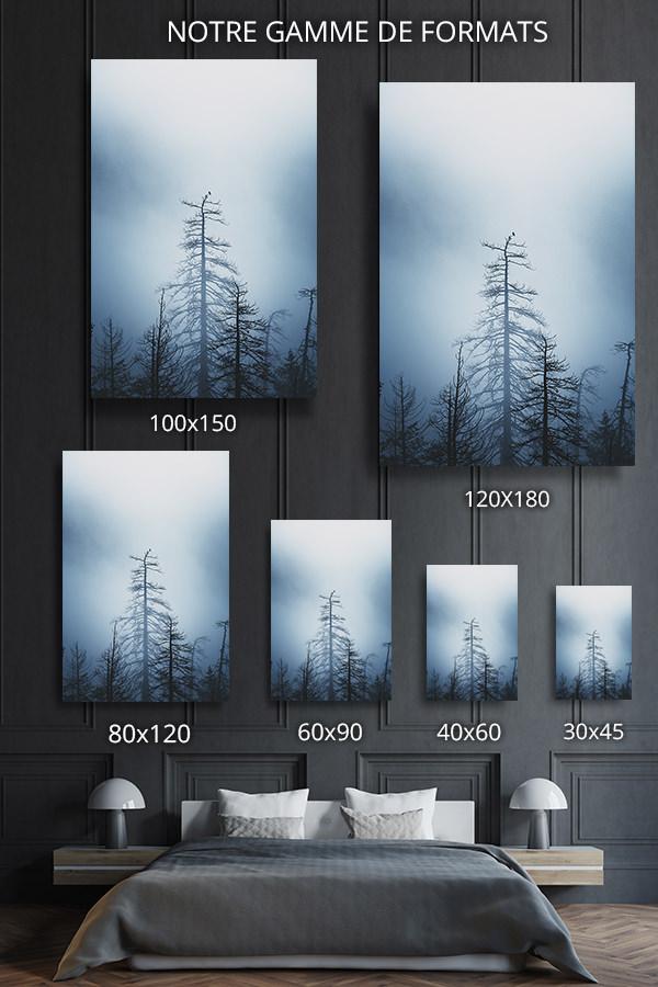 Photo-simple-formats-deco