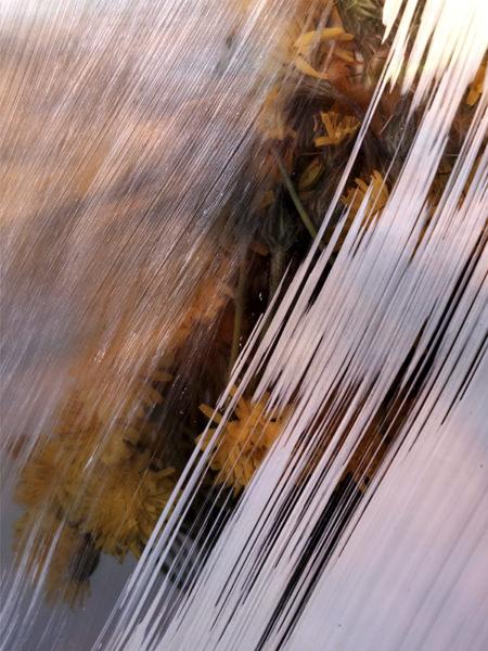 Photo-apparition-zoe-pignolet-4-3-120-160