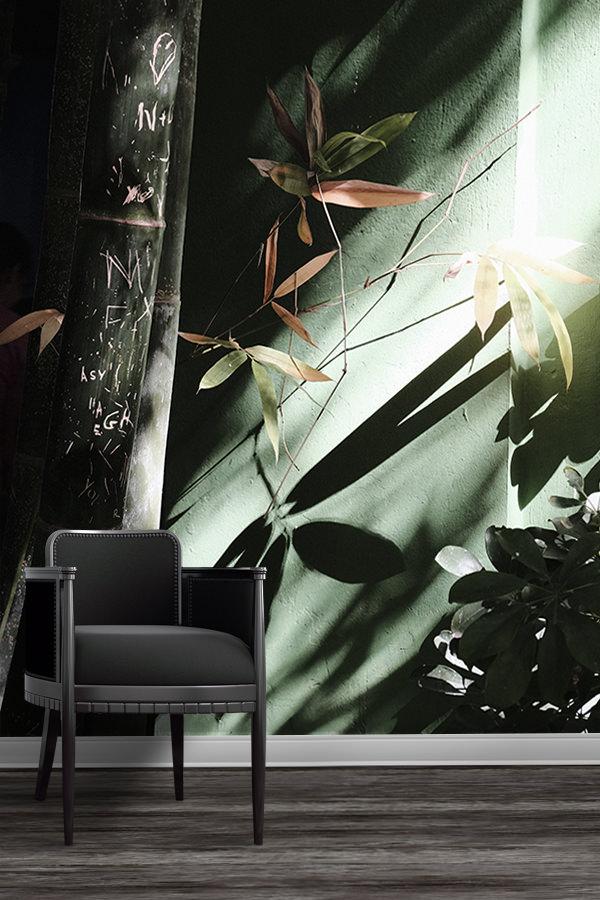 Photo-dans-le-jardin-papier-peint