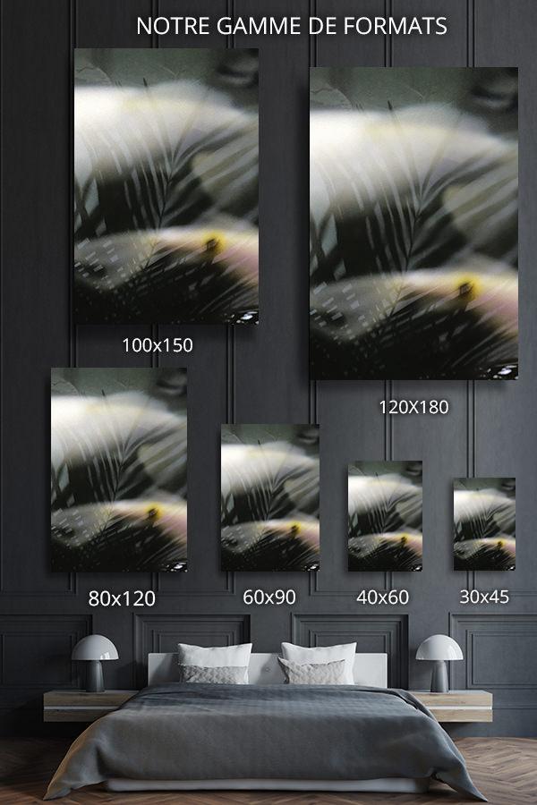Photo-diaphane-formats-deco