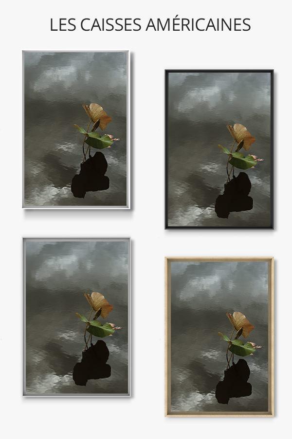 Photo-le-vent-caisse-americaine