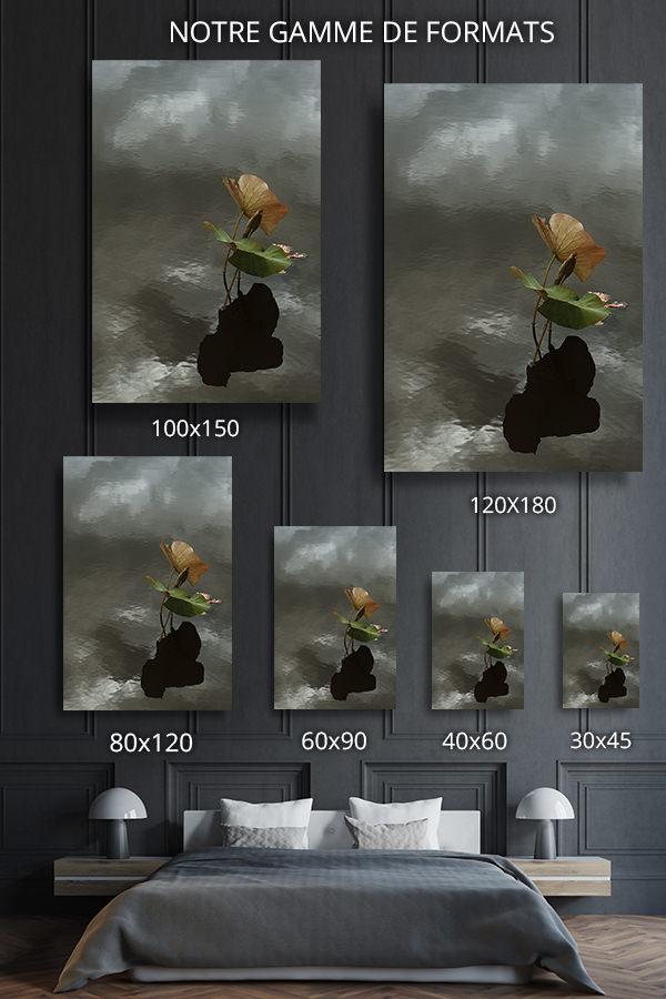 Photo-le-vent-formats-deco