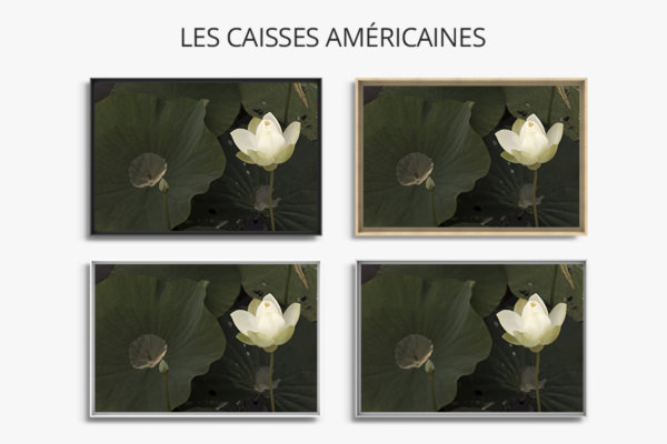 Photo-lueur-caisse-americaine