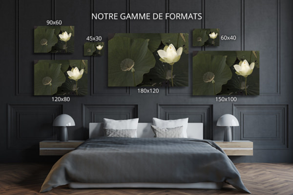 Photo-lueur-formats-deco
