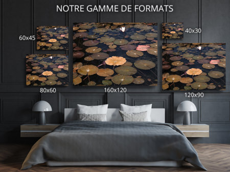 Photo-merveille-formats-deco