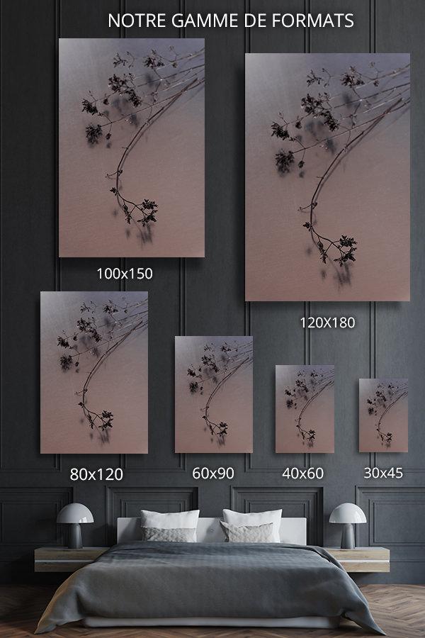 Photo-nature-morte-formats-deco