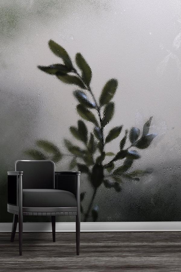 Photo-ombre-papier-peint