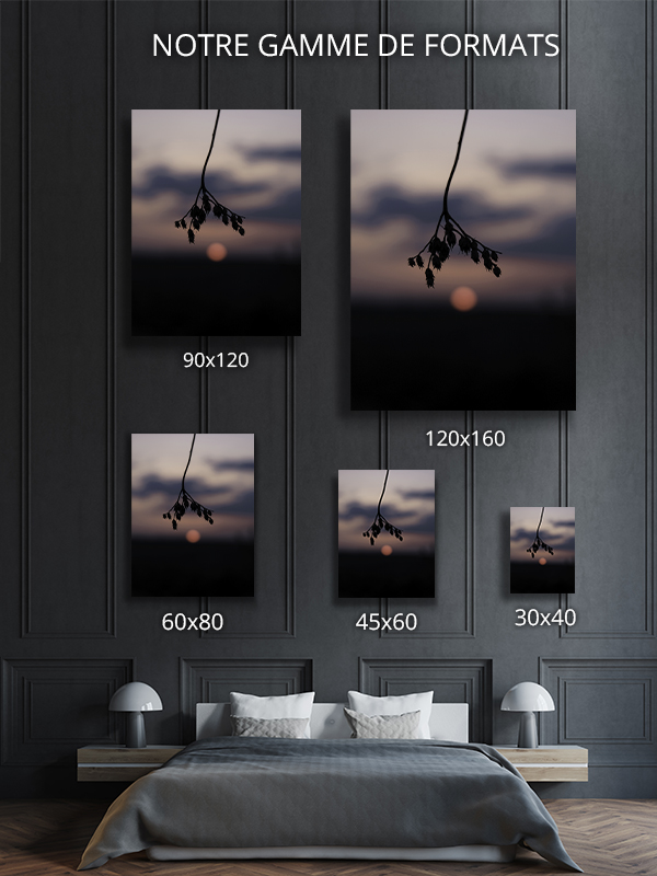 Photo-patience-formats-deco