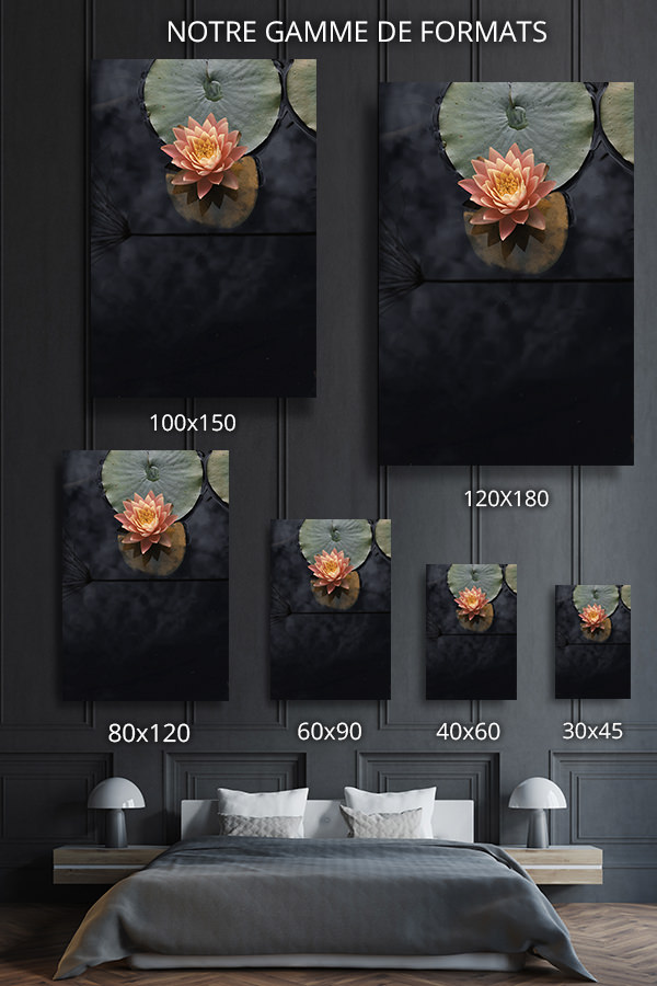 Photo-se-reveiller-doucement-formats-deco
