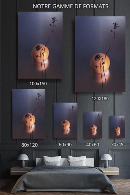 Photo-soleil-formats-deco