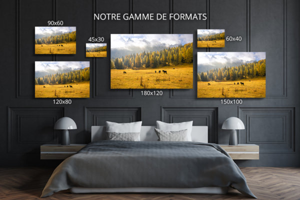 Photo-le-temps-met-tout-en-lumiere-formats-deco