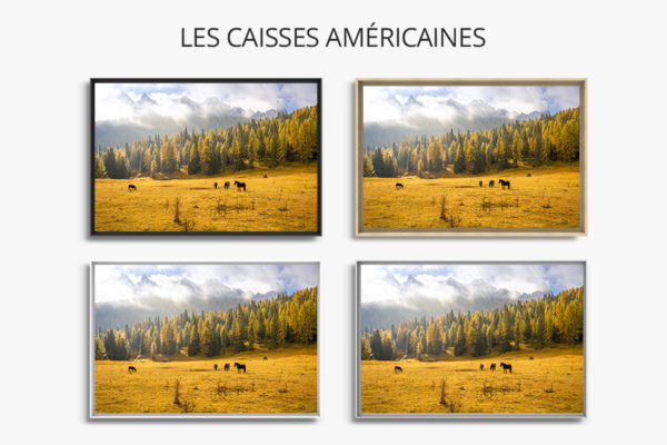 Photo-le-tps-met-tout-en-lumiere-caisse-americaine