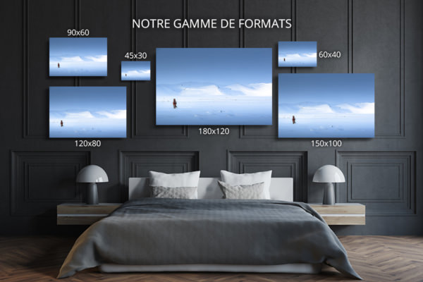 Photo-melrakkasletta-formats-deco