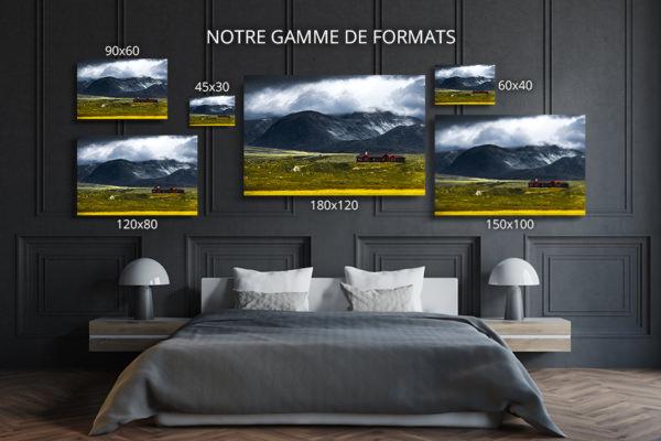 Photo-rondane-formats-deco