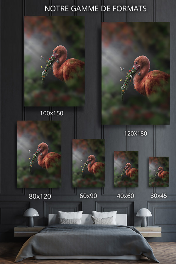 Photo-ibis-fleuri-formats-deco