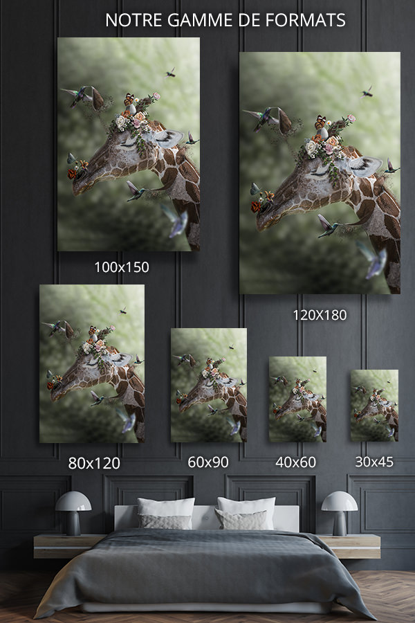 Photo-imagination-formats-deco