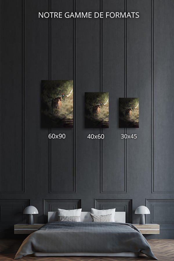 Photo-obstination-la-diversite-formats-deco