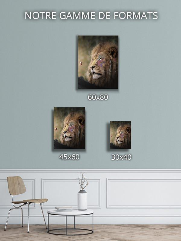 Photo-la-grandeur-formats-deco