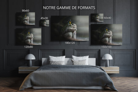 Photo-la-solitude-formats-deco