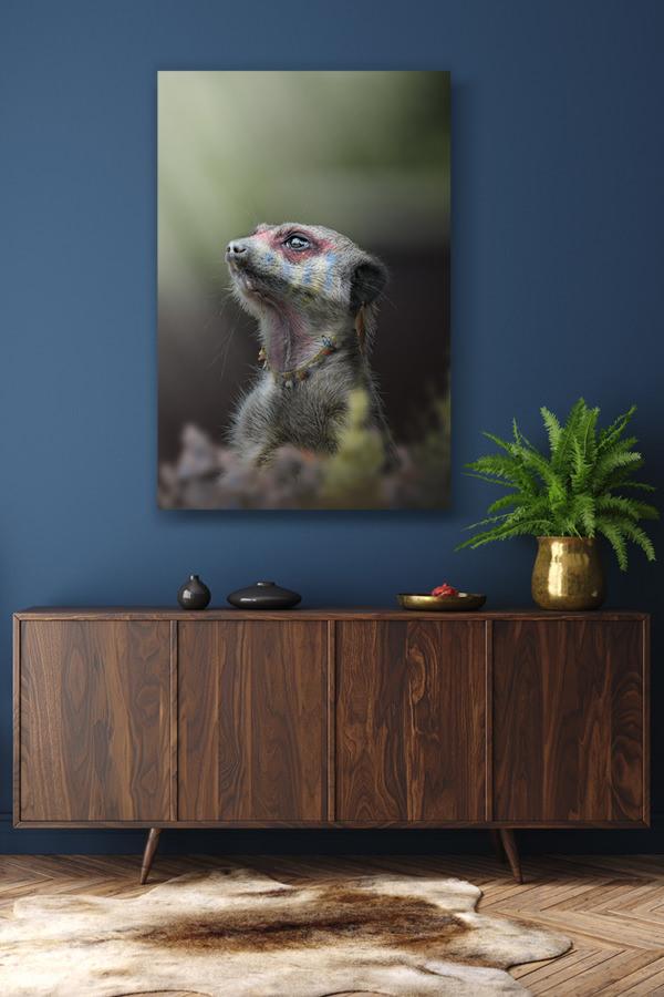 Photo-le-grand-chef-suricate-deco-1