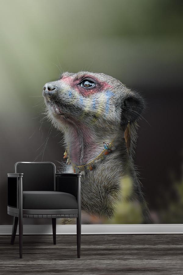Photo-le-grand-chef-suricate-papier-peint