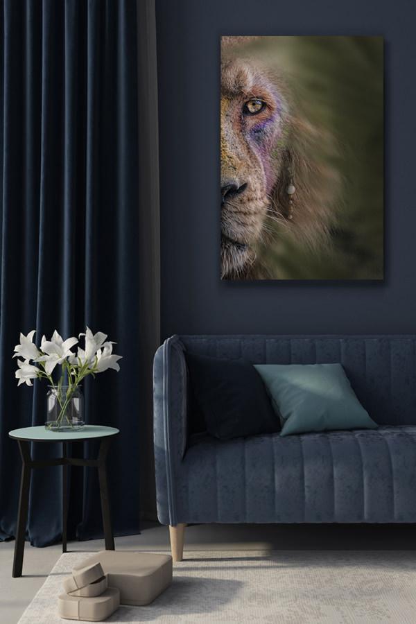Photo-le-roi-lion-deco-1