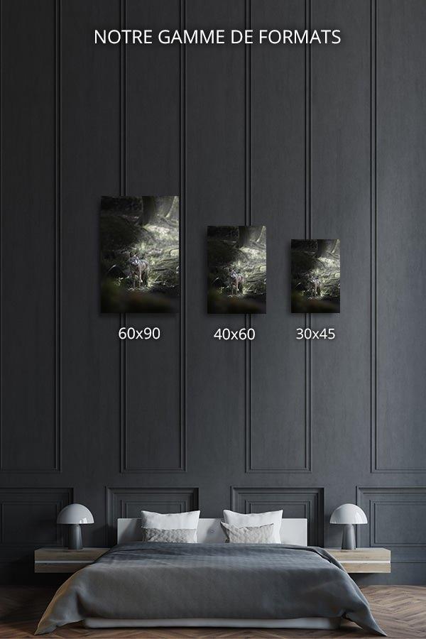 Photo-lenracinement-formats-deco