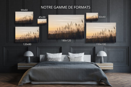 Photo-adelphia-formats-deco