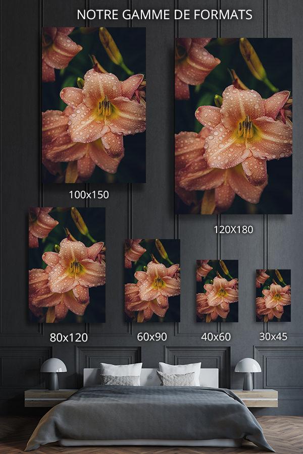 Photo-aenore-formats-deco