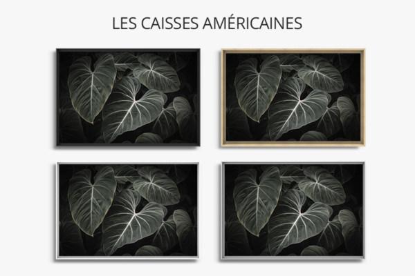 Photo-aiko-caisse-americaine
