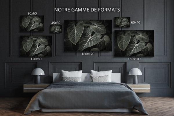 Photo-aiko-formats-deco