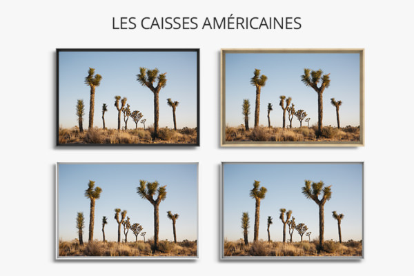 Photo-brother-caisse-americaine