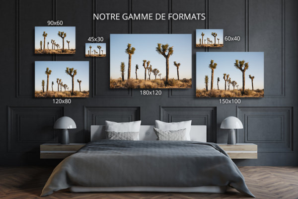 Photo-brother-formats-deco