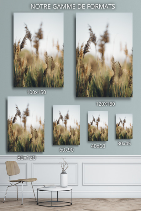 Photo-delicate-formats-deco