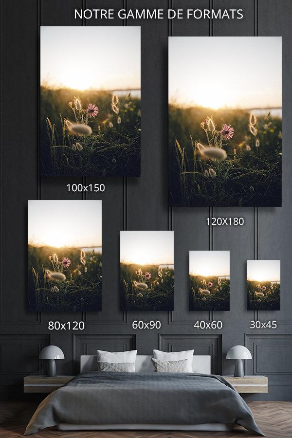 Photo-diana-formats-deco