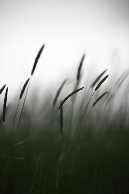 Photo-drama-loeil-deos-3-2-120-180