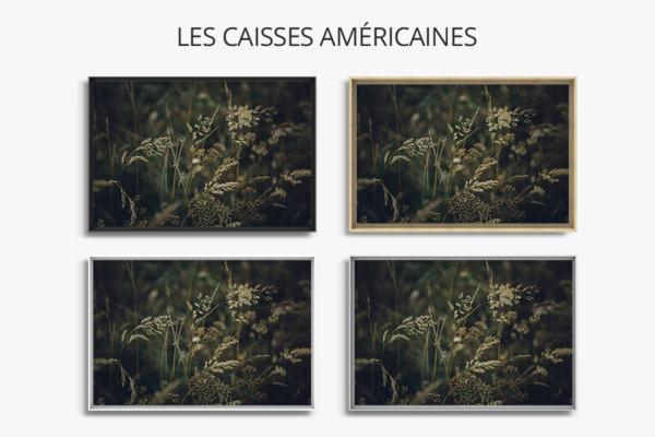 Photo-ezio-caisse-americaine