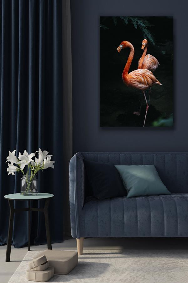 Photo-flamingos-1
