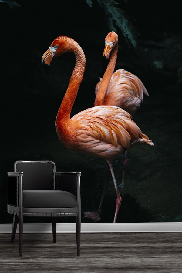 Photo-flamingos-papier-peint