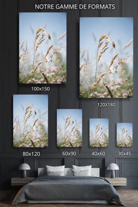 Photo-jade-formats-deco