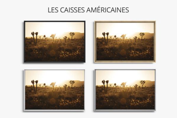 Photo-leni-caisse-americaine