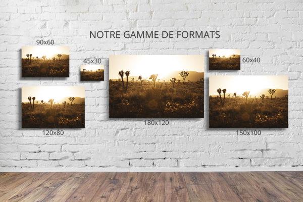 Photo-leni-formats-deco