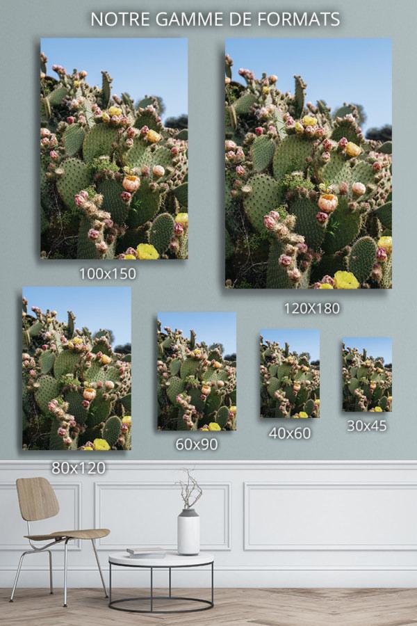 Photo-lilo-formats-deco