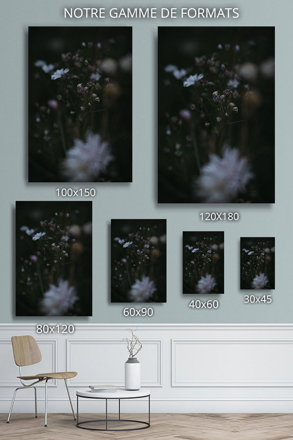 Photo-louka-formats-deco